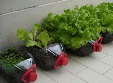 ایده جالب ساخت گلدان